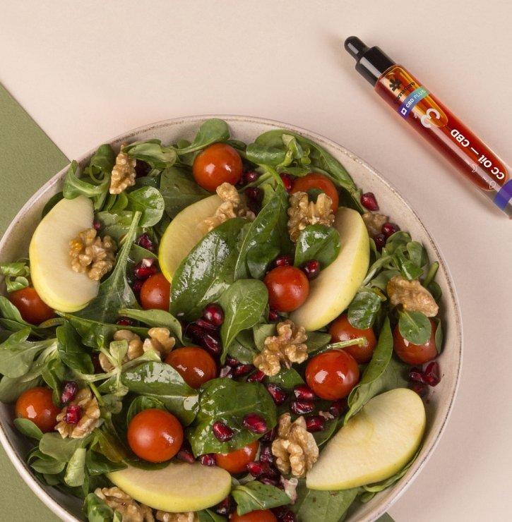 Zdraví prospívá nejen konopná mast. Do domácí lékárničky patří i kapsle a oleje CannaCare, které navíc obohatí i kuchyni